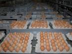 Genijalan trik otkriva koliko su stara jaja