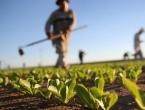 Proračun za poljoprivredu u Federaciji povećan za više od 18 milijuna KM