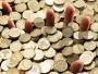 Ogavni podaci o najbogatijim ljudima na svijetu