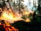 Ekolozi strahuju da bi požari u Rusiji mogli doseći povijesne razmjere