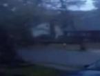 Pogledajte kako uragan Sandy s lakoćom čupa drveće
