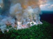 'Bogatuni' se digli zbog Amazonije