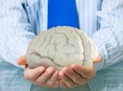 Koliko kalorija mozak potroši kada razmišljamo?