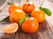 Mandarine iz Turske pune pesticida