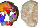 U Grčkoj nađeni najstariji ostaci modernog čovjeka izvan Afrike