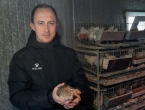 Od hobija razvio ozbiljan posao uzgoja japanskih prepelica