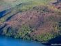 Ramske šume postale popularne za izbirljive turiste