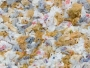 Za Dan planete Zemlje ispred sarajevske katedrale fotografije o zagađenju plastičnim kesama