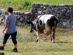 Hercegovačko selo nestaje