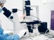 U izradi lijek za rak bez nuspojava