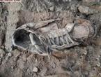 Na Rostovu iznad Bugojna pronađeni posmrtni ostaci, sumnja se da je riječ o nestalim Hrvatima