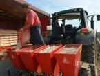 UN: Poskupili su pšenica, kukuruz i mliječni proizvodi