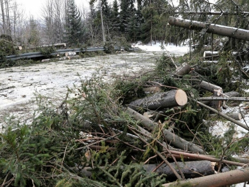 U oluji u SAD-u poginulo osmero ljudi