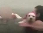 Objavljene strašne snimke ljudi koji su od požara bježali u more