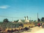 Pogledajte stare fotografije Međugorja iz 1981.