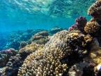 Oceani se zagrijavaju puno brže nego što se mislilo