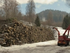 Nova sezona grijanja donosi glavobolju građanima BiH: Drva sve manje, cijene sve više
