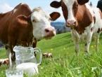 Mljekarstvo se gasi, i poljoprivrednike iz BiH tjera nepravda