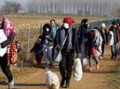 Slovenska policija privela migrante sa znakovima koronavirusa