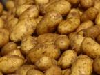 Zabranjen uvoz za još šest pošiljki sjemenskog krumpira