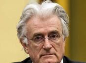 Tim obrane pravi planove za reviziju Karadžićeve presude
