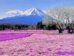 Planina Fuji dobiva bežični internet