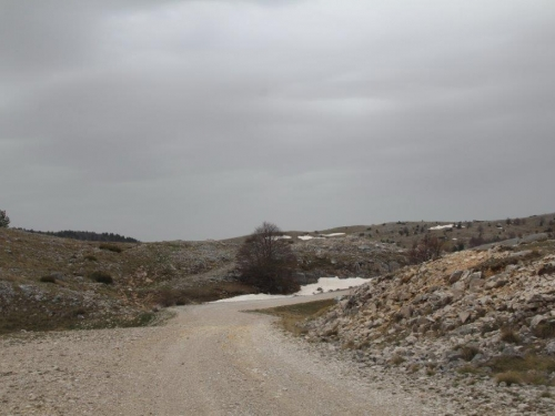 ''Cesta spasa'' postala cesta zaborava