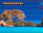 Pogledajte kako pas oživljava vojnikinju koja je ostala bez svijesti