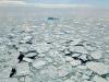 Temperatura na Arktiku porast će za 20 stupnjeva