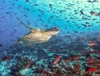 Umjetna inteligencija pomaže u čišćenju otpada iz oceana na obalama Galapagosa