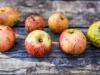 Zbog čega nastaju crne točkice na jabukama i jesu li one štetne?