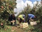 Rusija zabranila uvoz iz BiH zbog nedostatka potvrde o sigurnosti proizvoda