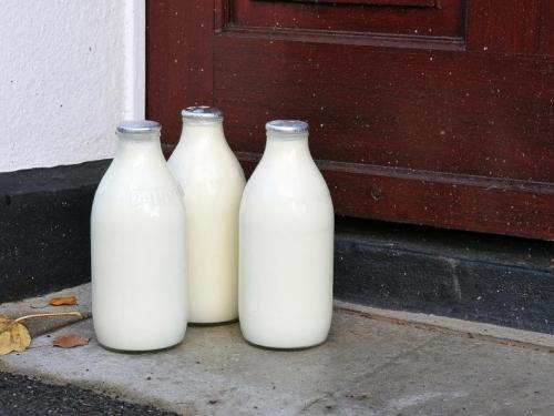Nastavlja se projekt kućne dostave svježeg mlijeka u Livnu i Tomislavgradu