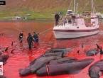 Masovni pokolj kitova i dupina na Farskim otocima