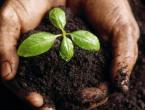 1,3 milijuna maraka za poljoprivredne poticaje u HNŽ-u