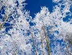 U Bosni će padati snijeg, dok će se u Hercegovini zadržati sunčano vrijeme