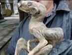 """Sibirski rudari otkrili ostatke misterioznog """"čudovšta"""""""