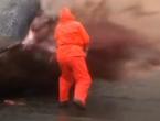 Plaža zatvorena zbog uginulog kita